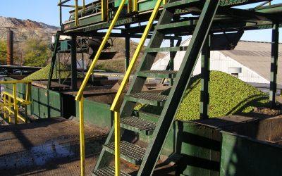 La Junta de Andalucía castiga a las almazaras industriales dejándolas otro año más sin ayudas para la transformación.-